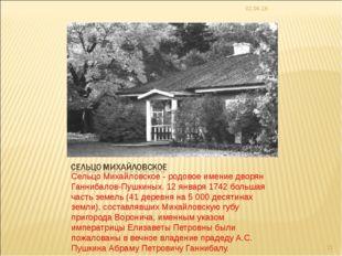 Сельцо Михайловское - родовое имение дворян Ганнибалов-Пушкиных. 12 января 17