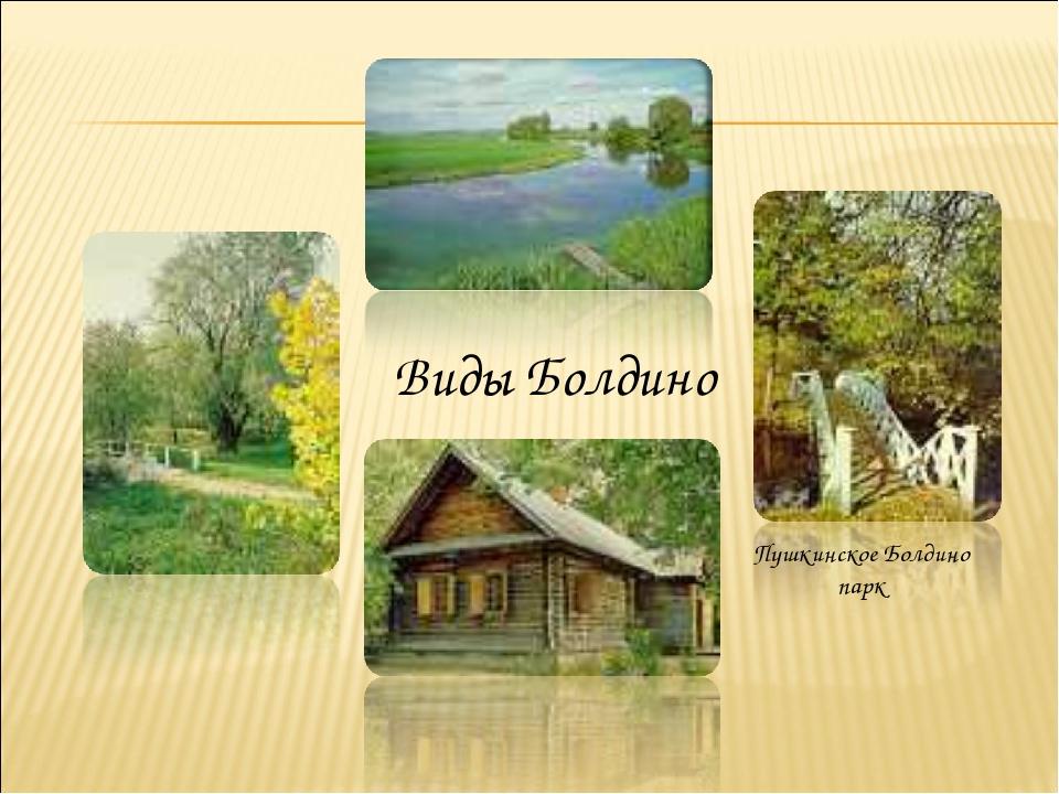 Виды Болдино Пушкинское Болдино парк