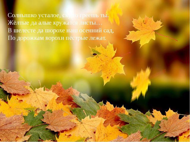 Солнышко усталое, скупо греешь ты. Жёлтые да алые кружатся листы… В шелесте д...