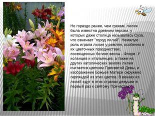 Но гораздо ранее, чем грекам, лилия была известна древним персам, у которых д