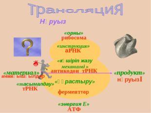 Нәруыз «орны» «инструкция» «материал» «тасымалдау» «құрастыру» «продукт» «эне