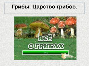 Грибы. Царство грибов.