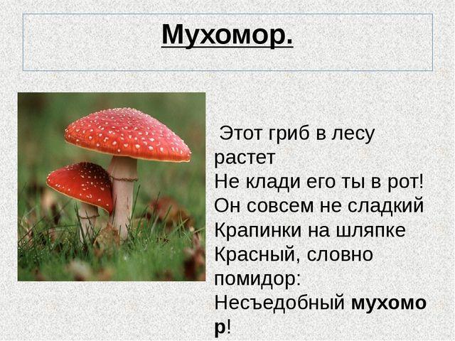 Мухомор. Этот гриб в лесу растет Не клади его ты в рот! Он совсем не сладкий...