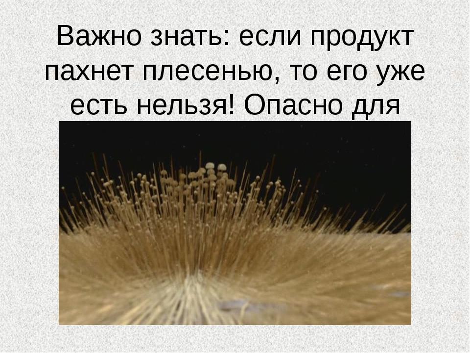 Важно знать: если продукт пахнет плесенью, то его уже есть нельзя! Опасно для...