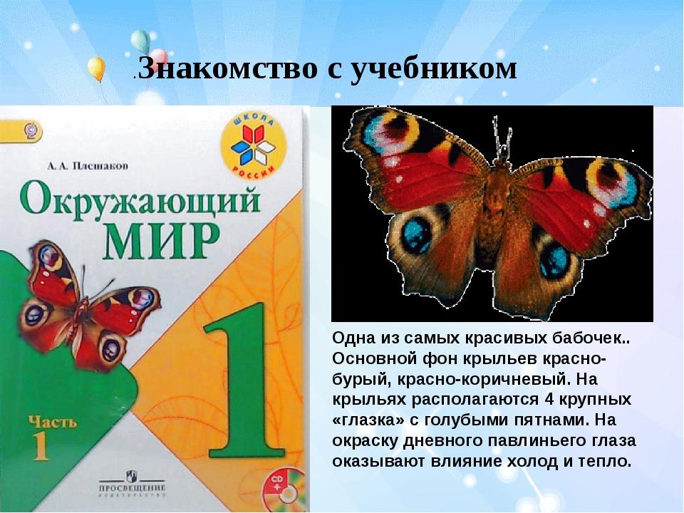 .Знакомство с учебником Одна из самых красивых бабочек.. Основной фон крылье...