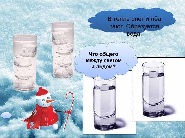 В тепле снег и лёд тают. Образуется вода. Что общего между снегом и льдом?