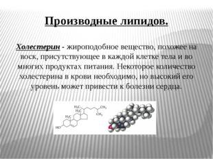Производные липидов. Холестерин- жироподобное вещество, похожее на воск, при