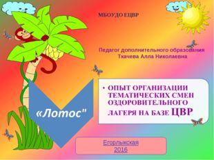 Егорлыкская 2016 МБОУДО ЕЦВР Педагог дополнительного образования Ткачева Алла