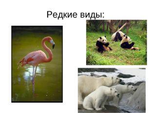 Редкие виды: