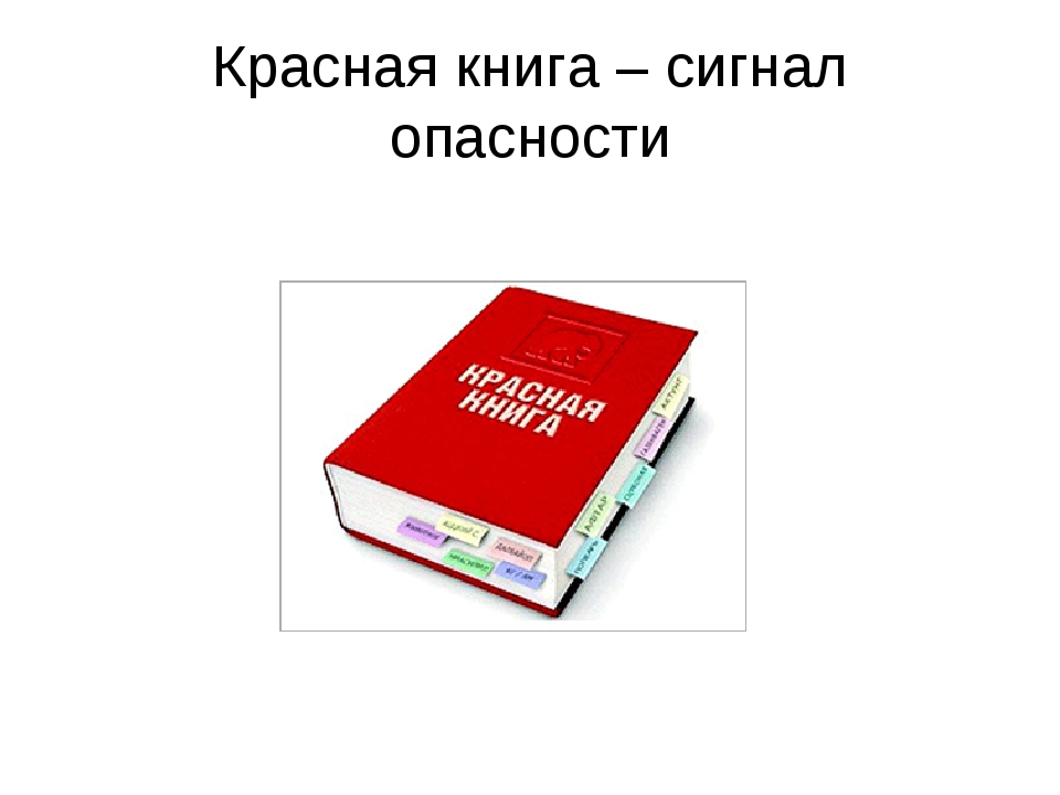 Красная книга – сигнал опасности
