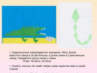 • Средняя длина новорождённого крокодила -30см. Длина взрослого самца в 16 р
