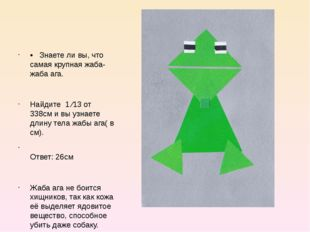 • Знаете ли вы, что самая крупная жаба- жаба ага. Найдите 1 ⁄13 от 338см и в