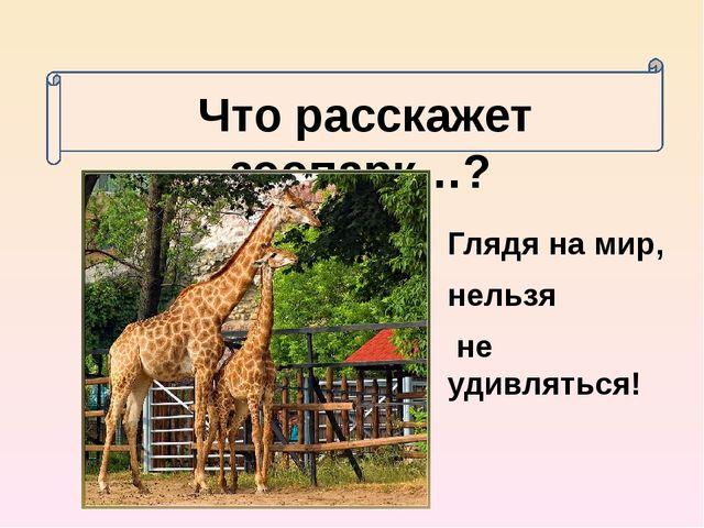 Глядя на мир, нельзя не удивляться! Что расскажет зоопарк…?