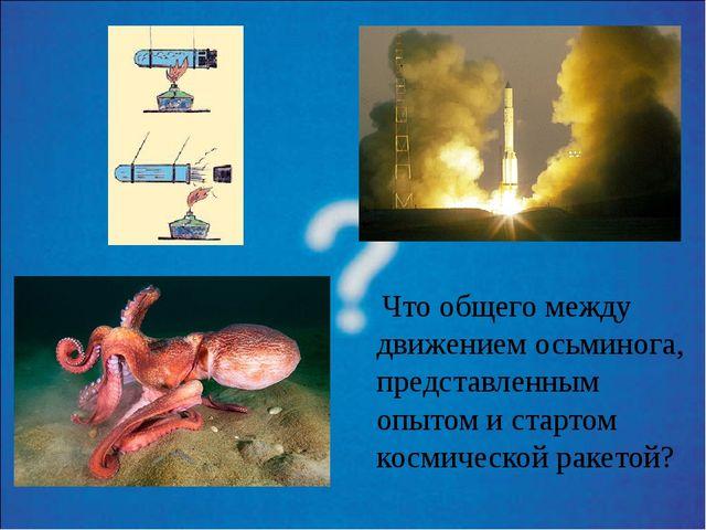 Что общего между движением осьминога, представленным опытом и стартом космич...