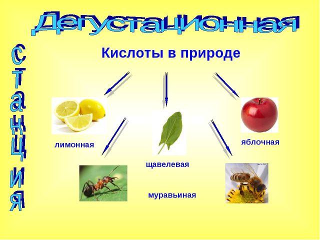 Кислоты в природе лимонная яблочная щавелевая муравьиная