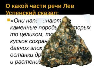 О какой части речи Лев Успенский сказал: «Они напоминают те каменные породы,