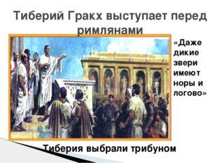 Тиберий Гракх выступает перед римлянами «Даже дикие звери имеют норы и логово