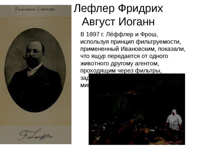 Лефлер Фридрих Август Иоганн В 1897 г. Лёффлер и Фрош, используя принцип филь...