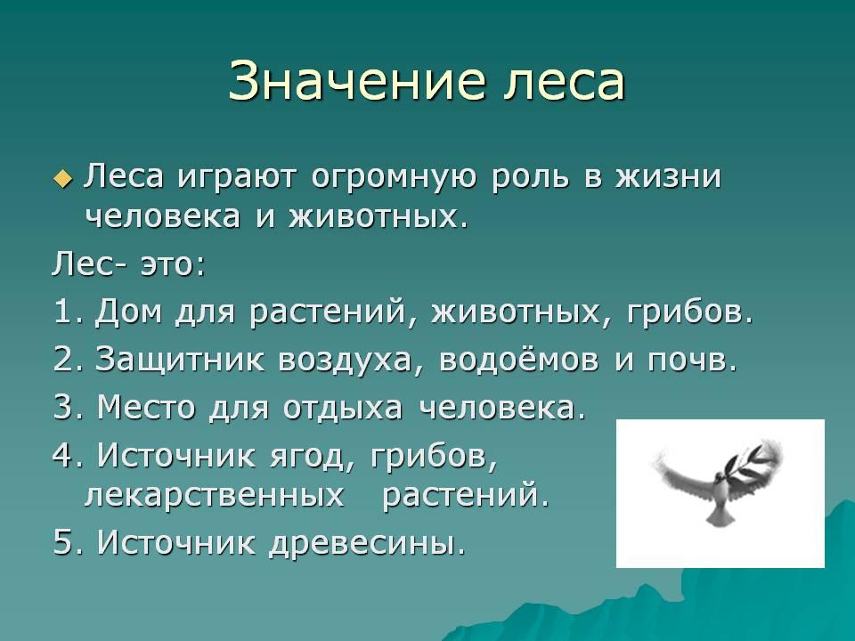 hello_html_m5271576c.jpg