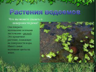 * * Что вы можете сказать о поверхности реки? Она покрыта маленькими зелеными