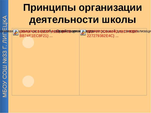 МБОУ СОШ №33 Г. ЛИПЕЦКА Принципы организации деятельности школы