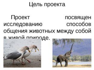 Цель проекта Проект посвящен исследованию способов общения животных между соб