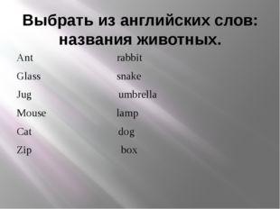 Выбрать из английских слов: названия животных. Ant rabbit Glass snake Jug umb