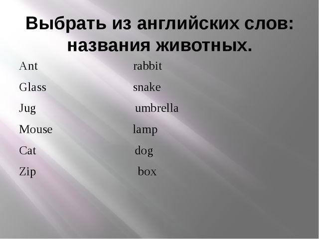Выбрать из английских слов: названия животных. Ant rabbit Glass snake Jug umb...