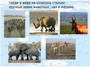 Евразия . Нигде в мире не осталось столько крупных диких животных , как в Афр