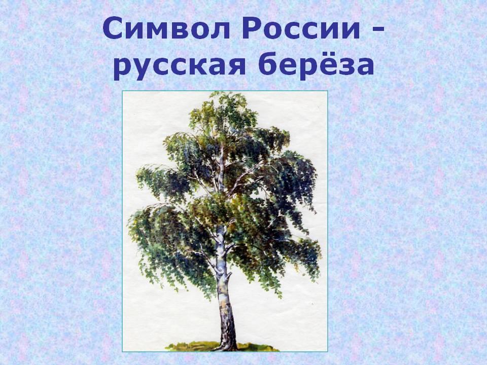 hello_html_m2e362b2a.jpg