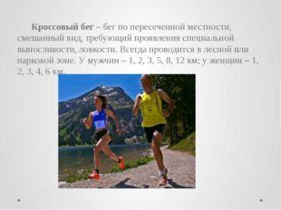 Прыжки как способ преодоления препятствий характеризуются кратковременными,
