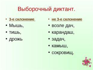 Выборочный диктант. 3-е склонение Мышь, тишь, дрожь не 3-е склонение возле да