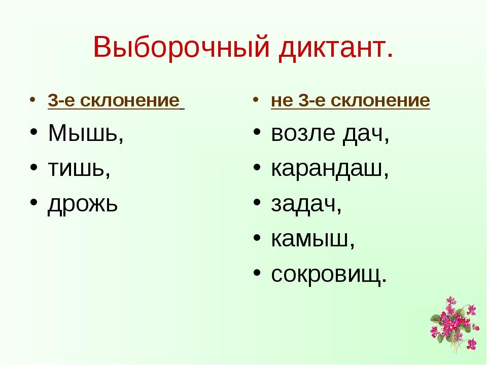 Выборочный диктант. 3-е склонение Мышь, тишь, дрожь не 3-е склонение возле да...