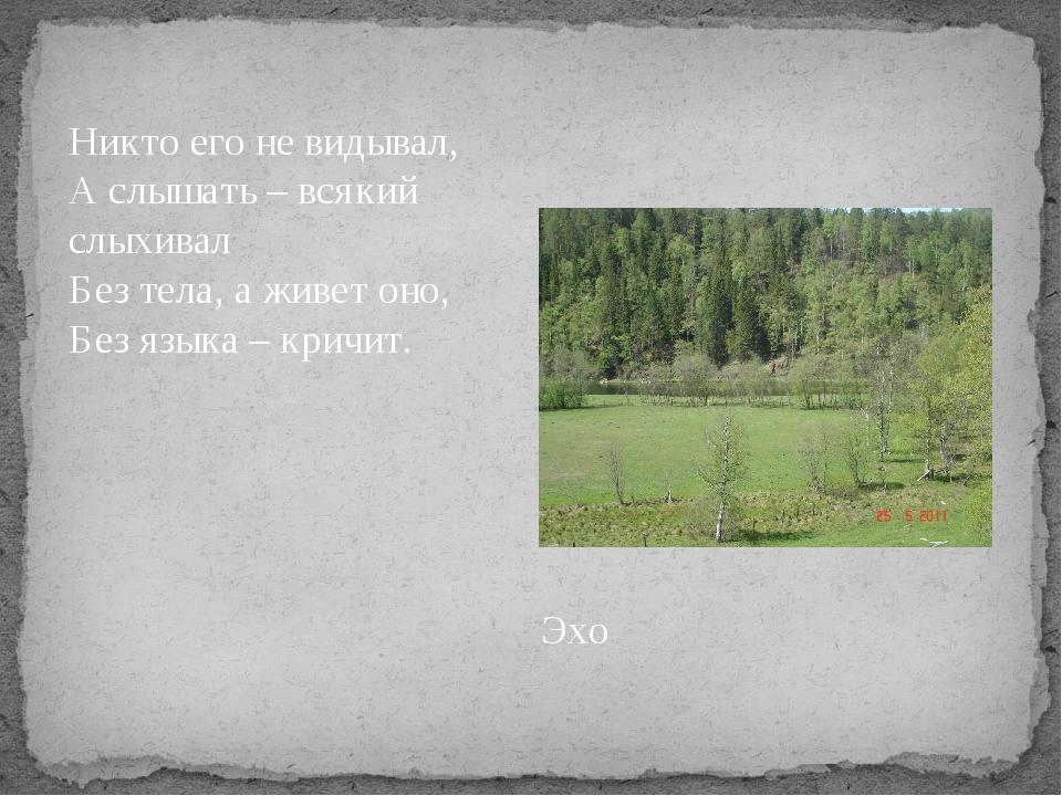Никто его не видывал, А слышать – всякий слыхивал Без тела, а живет оно, Без...