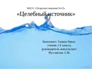 МБОУ «Татарская гимназия № 65» «Целебный источник» Выполнил: Такиев Ринат, у