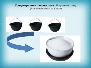 Концентрация соли высокая: 19 грамм на 1 литр (4 столовые ложки на 1 литр)