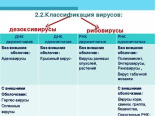 2.2.Классификация вирусов: дезоксивирусы рибовирусы     ДНК двухн