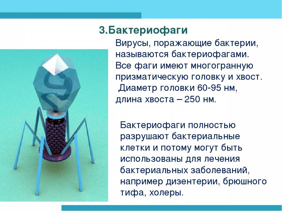 3.Бактериофаги Вирусы, поражающие бактерии, называются бактериофагами. Все фа...