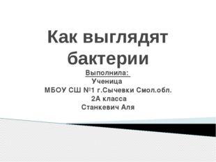 Как выглядят бактерии Выполнила: Ученица МБОУ СШ №1 г.Сычевки Смол.обл. 2А кл