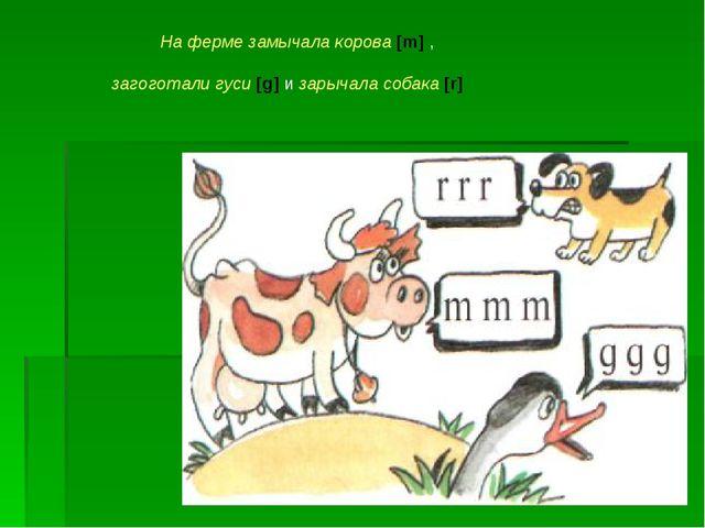 На ферме замычала корова [m] , загоготали гуси [g] и зарычала собака [r]