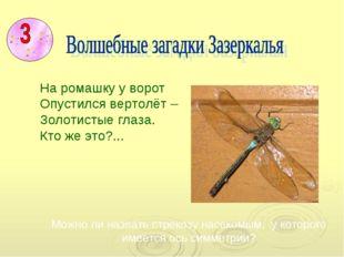 Можно ли назвать стрекозу насекомым, у которого имеется ось симметрии? На ро