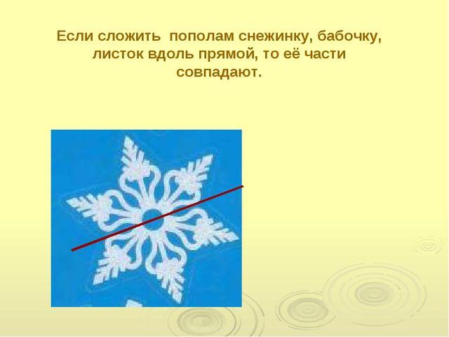Если сложить пополам снежинку, бабочку, листок вдоль прямой, то её части совп...