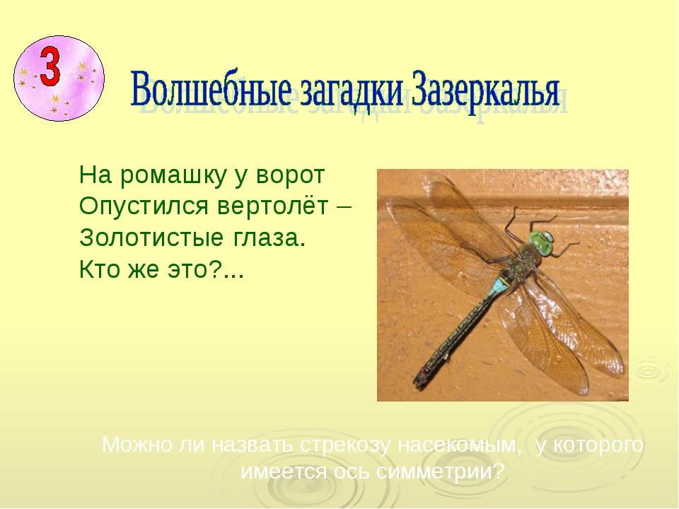 Можно ли назвать стрекозу насекомым, у которого имеется ось симметрии? На ро...