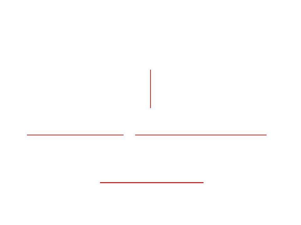 Существуют даже слова, имеющие ось симметрии МАДАМ КОК ФОКС НОС
