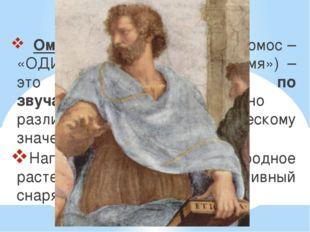 Омонимы – это… Омонимы (от древнегереч.:хомос – «ОДИНАКОВЫЙ», онима – «имя»)