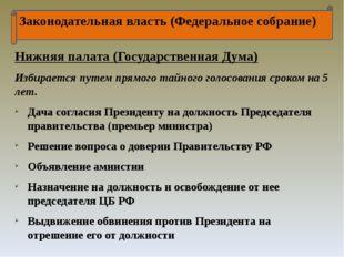 Законодательная власть (Федеральное собрание) Нижняя палата (Государственная