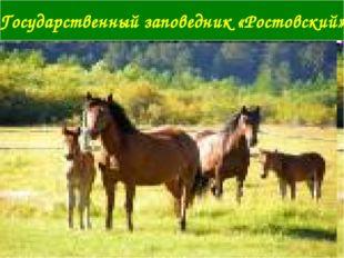 Государственный заповедник «Ростовский»