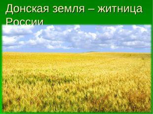 Донская земля – житница России