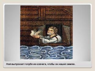 Ной выпускает голубя из ковчега, чтобы он нашел землю.