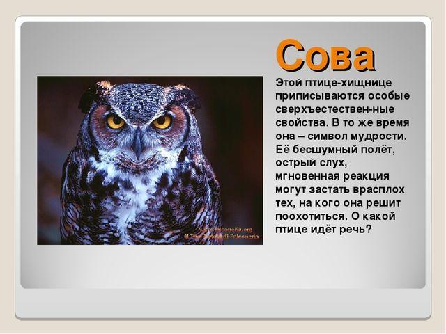 Сова Этой птице-хищнице приписываются особые сверхъестествен-ные свойства. В...